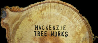 Mackenzie Tree Works | Inverness, Tain, Nairn, Forres, Elgin and surrounding areas
